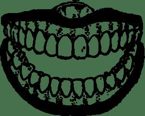 teeth-800px