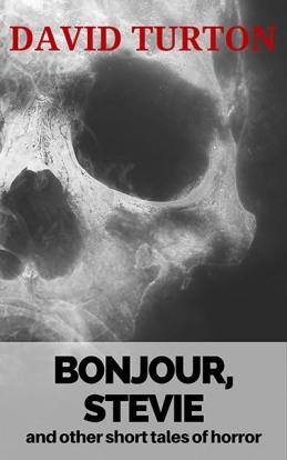 bonjour-stevie-2-copy
