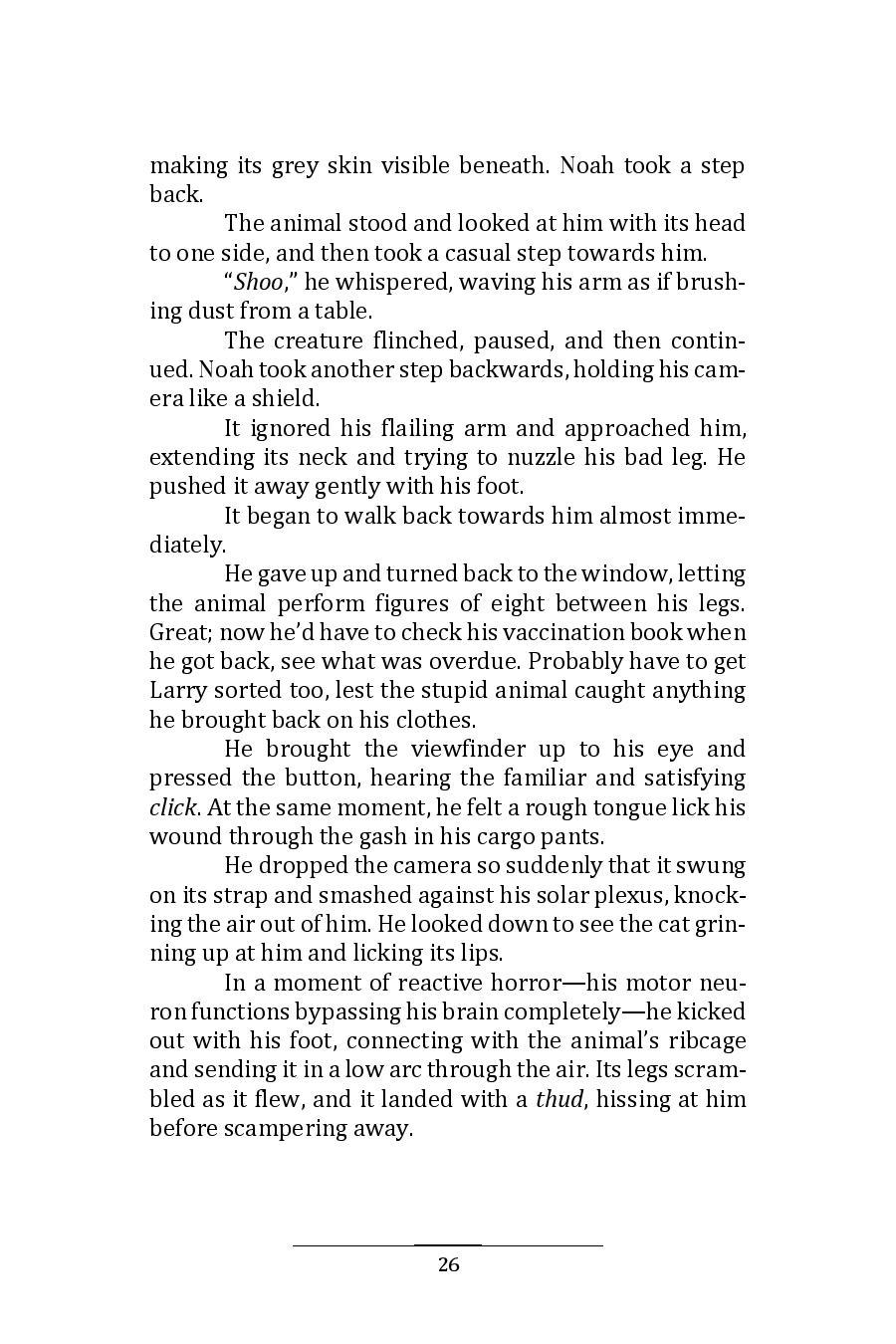 Hinnom Magazine 001 Manuscript 10-page-030