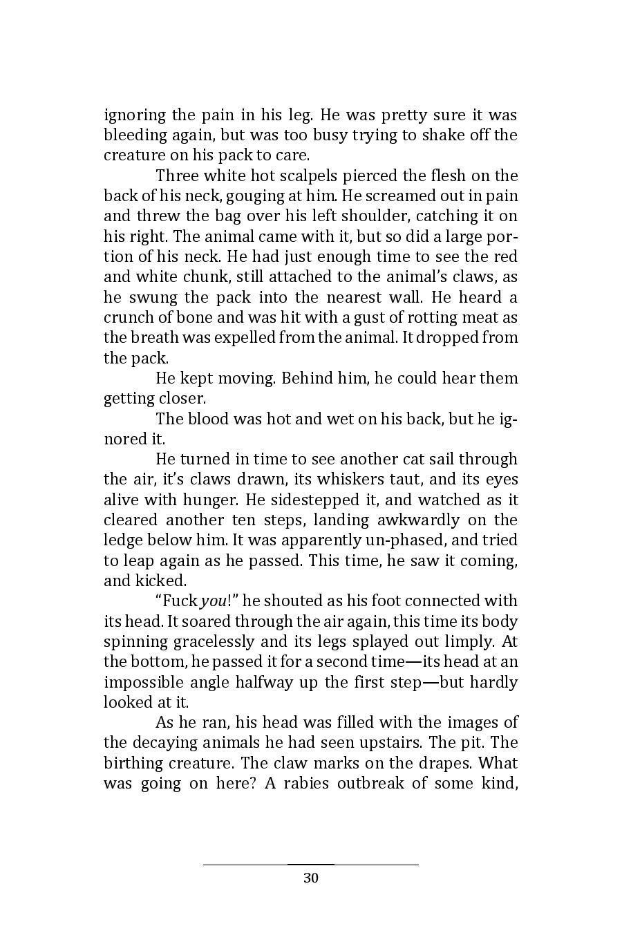 Hinnom Magazine 001 Manuscript 10-page-034