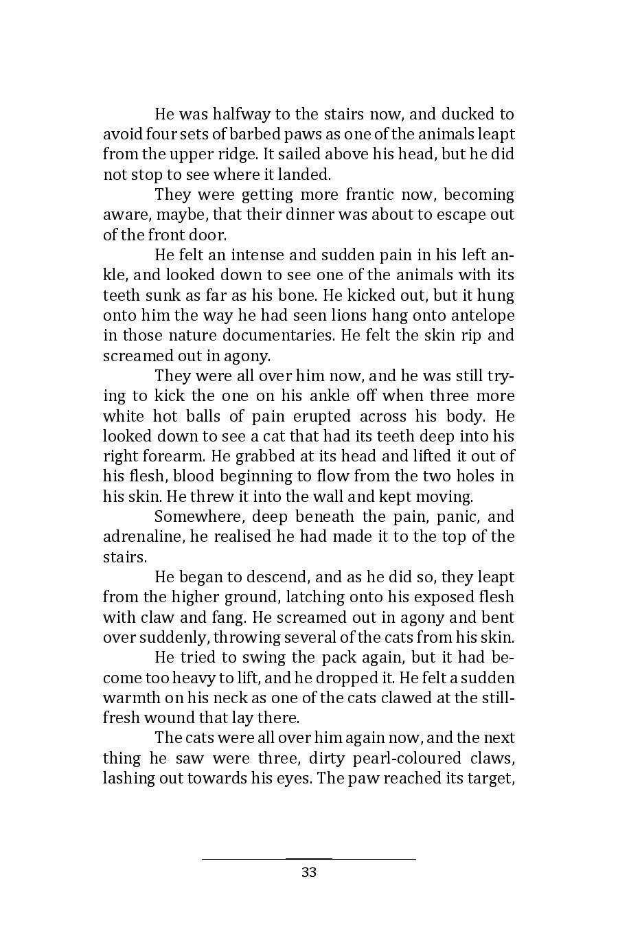 Hinnom Magazine 001 Manuscript 10-page-037